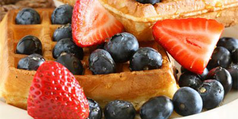 Easy Isagenix Snack Ideas - Protein Waffles