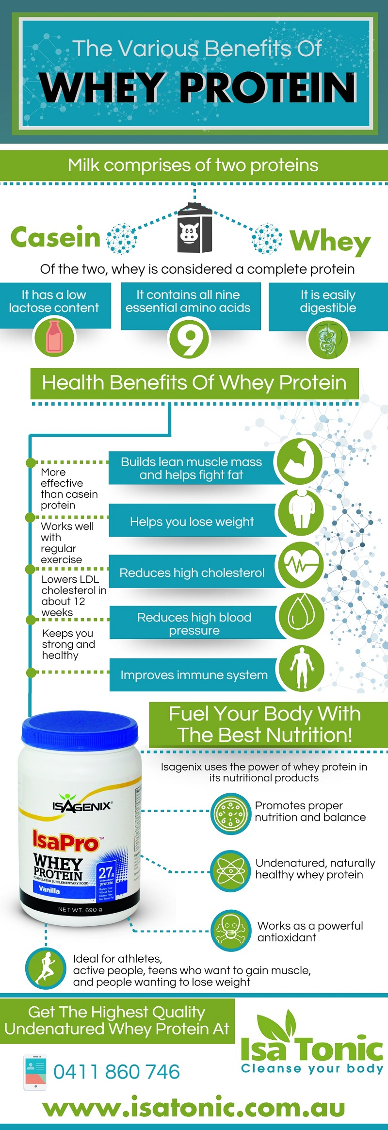 The Benefits of Whey Protein Infographic