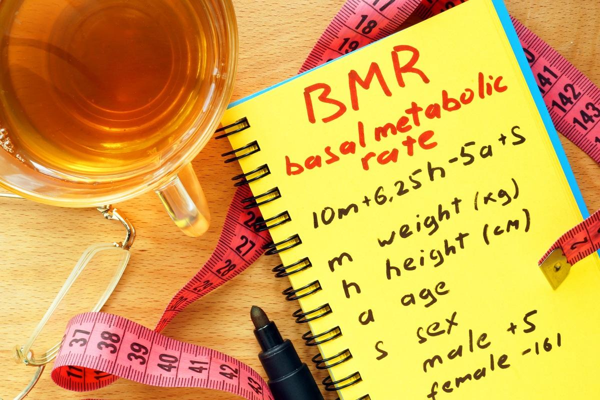 BMR (basal metabolic rate)